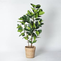 Artificial Rubber Leaf Tree in Pot Green - Threshold™ designed with Studio McGee | Target