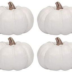 Elanze Designs Classic White 6 inch Resin Harvest Decorative Pumpkins Pack of 4 | Amazon (US)