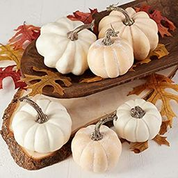 Factory Direct Craft Package of 6 Fall Artificial Assorted Creamy White Pumpkins for Halloween, F... | Amazon (US)