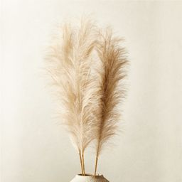Faux Pampas Grass Taupe Stem Set of 3 | CB2