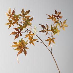 Faux Gold Maple Leaf Spray   Terrain