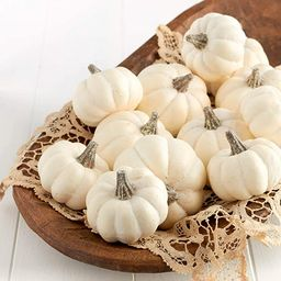 Factory Direct Craft 12 Small Off White Baby Boo Artificial Pumpkins for Halloween, Fall and Than... | Amazon (US)