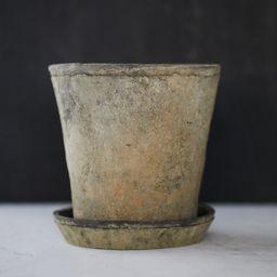 Earth Fired Clay Herb Pot + Saucer   Terrain