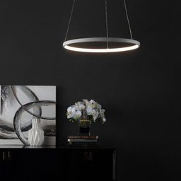 Shangrila 1 - Light Unique / Statement Drum LED Pendant Ivy Bronx | Wayfair North America