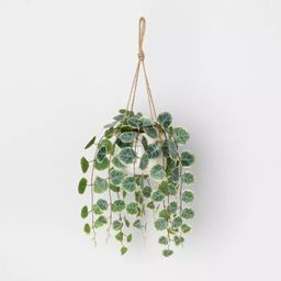 Faux Hanging Vine Potted Plant - Hearth & Hand™ with Magnolia   Target