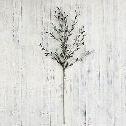 Olive Branch | Pottery Barn (US)