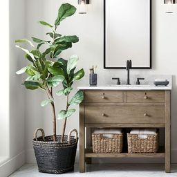 Faux Potted Fiddle Leaf Fig Trees | Pottery Barn (US)