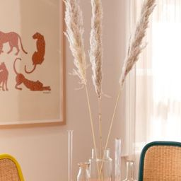 Dried Pampas Grass Bunch | Urban Outfitters (US and RoW)