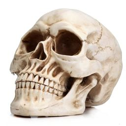Prextex 6.5 inch Realistic Looking Skeleton Skull for Best Halloween Decoration | Amazon (US)