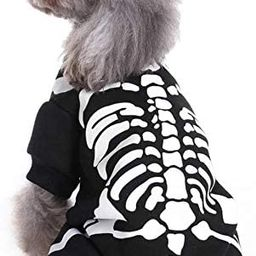 Wizland Pet Dogs Jumpsuit Halloween Skeleton Dog Hoodies Costumes Clothes Apparel for Puppy Dog C... | Amazon (US)