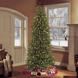 Pre-lit Slim Fraser Green Fir Artificial Christmas Tree with Clear/White Lights   Wayfair North America