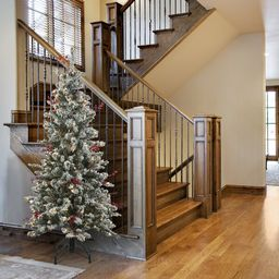 5 Ft. Memory-Shape® Snowy Freehold Spruce Pencil Slim Tree With Clear Lights   Wayfair North America
