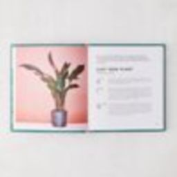 Little Book of House Plants and Other Greenery By Emma Sibley | Urban Outfitters (US and RoW)