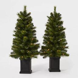 2ct/3.5ft Pre-lit Artificial Christmas Tree Potted Douglas Fir Clear Lights - Wondershop™ | Target