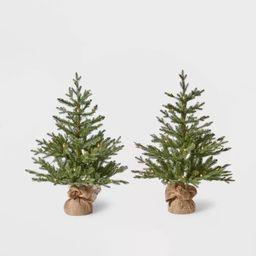 2pk 3ft Pre-Lit Potted Balsam Fir Artificial Tree Clear Lights - Wondershop™ | Target
