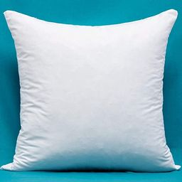 Includes Only One Cotton Fabric Pillow Insert, Filled with Down and Feather Decorative Throw Pill...   Amazon (US)