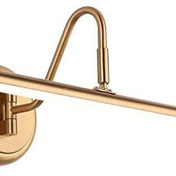 Picture Lights 16.54'' Inch Brass for Painting Display Wall, Metal Artwork LED Wall Lamp,9W(45W E... | Amazon (US)