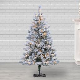 4ft Pre-Lit Flocked Colorado Spruce Artificial Christmas Tree   Pottery Barn (US)