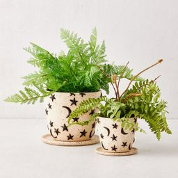 Estrella Planter And Tray | Urban Outfitters (US and RoW)