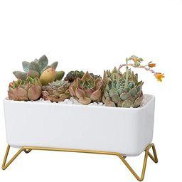 NHEINNO Rectangular Succulent Pot with Stand Modern Minimalist White Ceramic Succulent Planter fo... | Amazon (US)