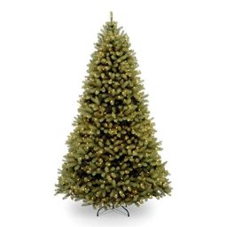 National Tree Company 6-ft Douglas Fir Pre-Lit Traditional Artificial Christmas Tree with 600 Con...   Lowe's