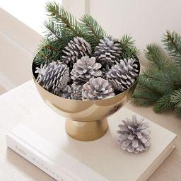 Painted Pinecones | West Elm (US)