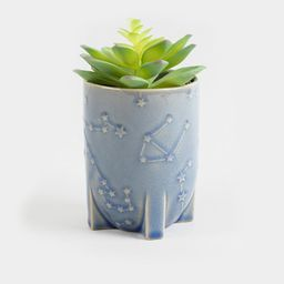 Constellation Planter with Faux Succulent | Francesca's Collections