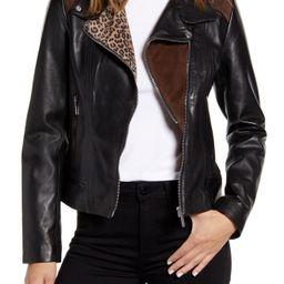 Women's Bernardo Mixed Media Leather Moto Jacket, Size X-Small - Black | Nordstrom
