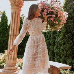 Sicily Dress - Champagne Lining   Ivy City Co