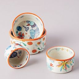 Annevieve Measuring Cups, Set of 4 | Anthropologie (US)
