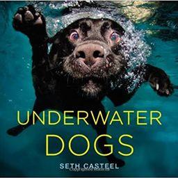 Underwater Dogs | Amazon (US)