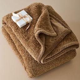 Cozy Teddy Faux Fur Throws | Pottery Barn (US)