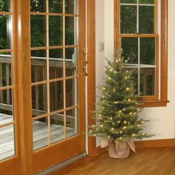 Nordic Spruce 2.5' Green Spruce Artificial Christmas Tree with 100 Clear/White Lights | Wayfair North America
