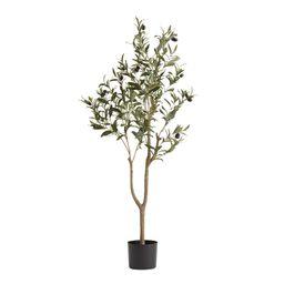 Faux Olive Tree by World Market | World Market