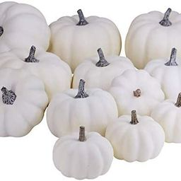 BESTTOYHOME 12 PCS Assorted Sizes Rustic Harvest White Artificial Pumpkins for Halloween, Fall Th...   Amazon (US)