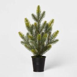 Small Greenery Christmas Tree in Black Bucket Decorative Figurine Green - Wondershop™   Target