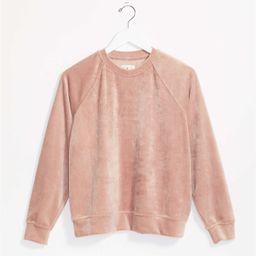 Lou & Grey Velvet Sweatshirt   LOFT   LOFT