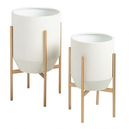 Tapered Ivory Planter With Gold Stand | World Market