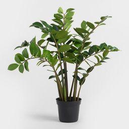 Medium Faux Zamioculcas Plant | World Market