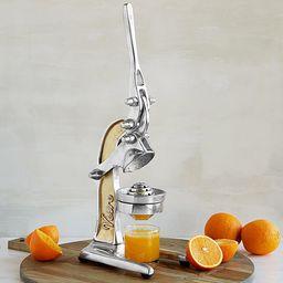 Countertop Citrus Juicer   UncommonGoods