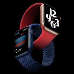 Apple Watch SE   Apple (US)