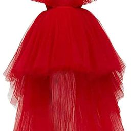 Simlehouse High Low Tulle Prom Dress Plus Size Puffy Ruffles Cocktail Party Ball Gowns 2020 | Amazon (US)