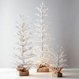Pre-Lit Snowy Crystal Trees   Pottery Barn (US)