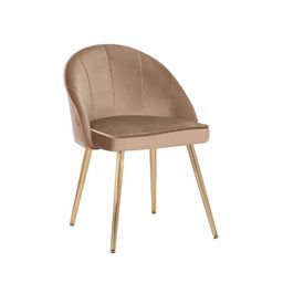 Nesmith Velvet Upholstered Side Chair | Wayfair North America