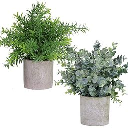 Winlyn 2 Pack Artificial Potted Plants Faux Eucalyptus & Rosemary Greenery in Pots Small Housepla...   Amazon (US)