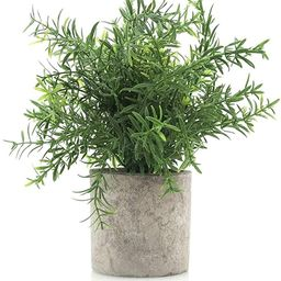 Velener Mini Potted Plastic Fake Green Plant for Home Decor (Bamboo Leaves)   Amazon (US)