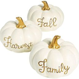 White Pumpkin with Gold Centerpieces (3 Piece Set) Fall and Halloween Home Decor   Amazon (US)