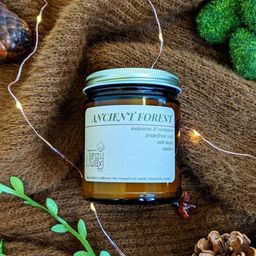 Ancient Forest Scented Candle  Bookish Candle  Oakmoss    Etsy   Etsy (US)