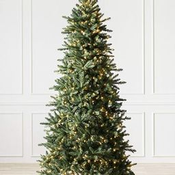 Balsam Hill 6.5ft Premium Pre-Lit Artificial Christmas Tree Berkshire Mountain Fir with Clear LED...   Amazon (US)