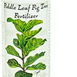 Fiddle Leaf Fig Tree Fertilizer   Ficus Plant Food   Improves Leaves and Branches   Potted Indoor...   Amazon (US)